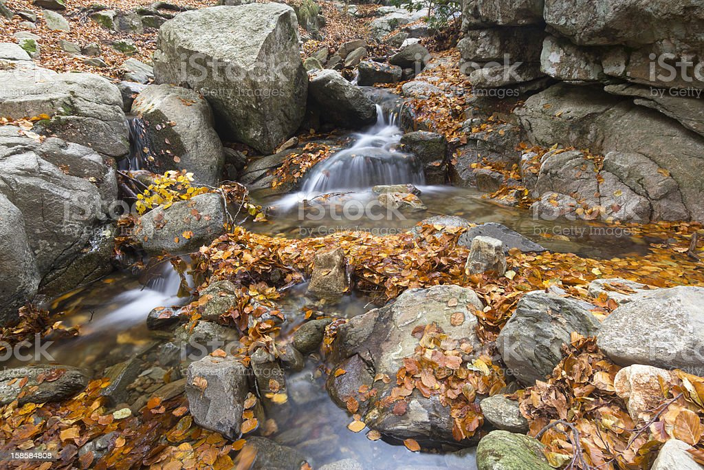 Stream in Montseny Natural Park stock photo