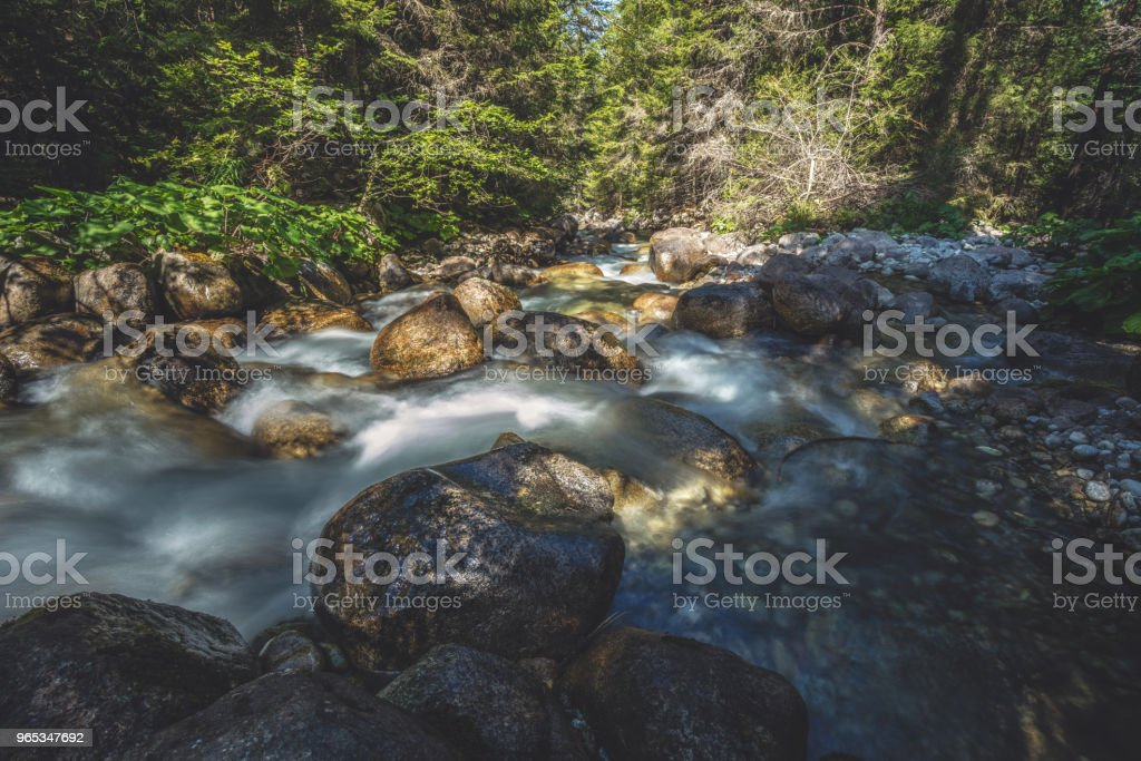 Stream in mountains and big mossy boulders royalty-free stock photo
