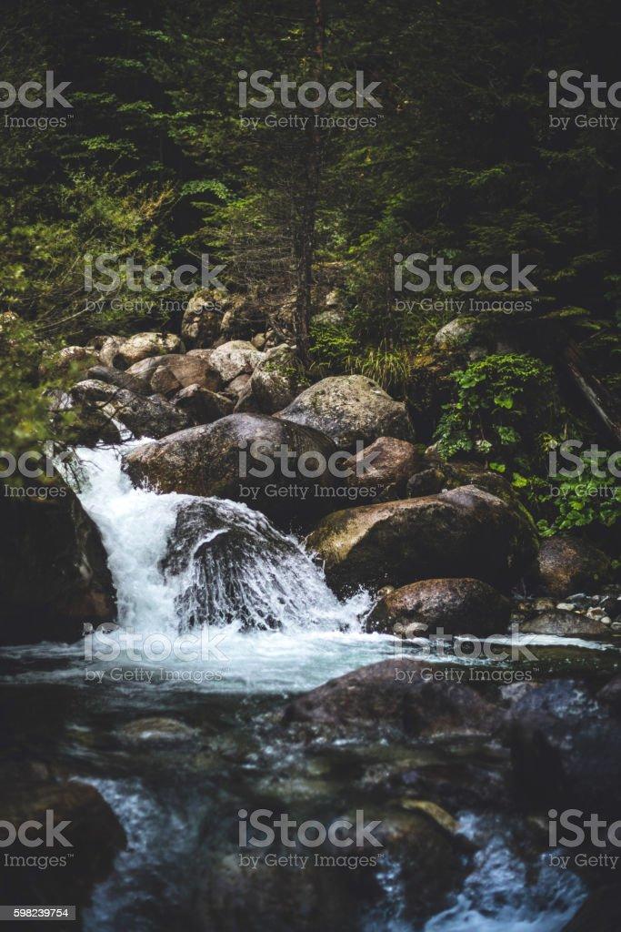Stream in Berge – Foto