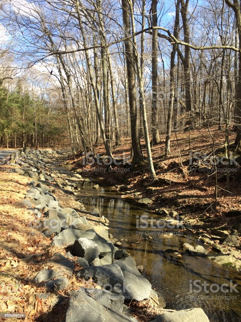 Stream in New Jersey stock photo