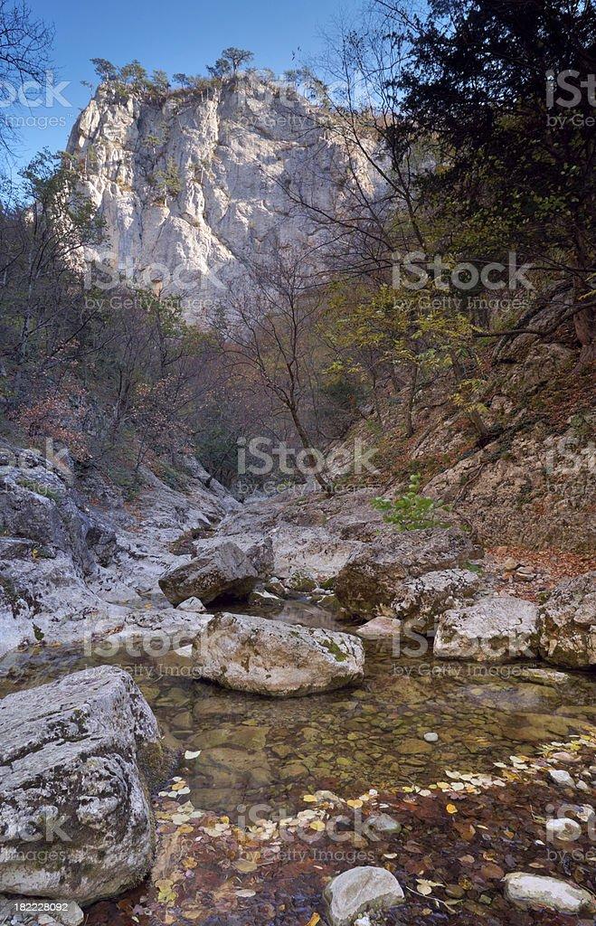 stream in ravine royalty-free stock photo