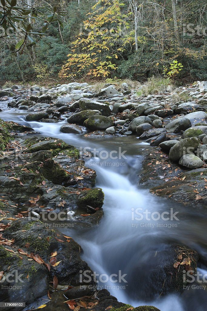 Stream in Smokies royalty-free stock photo
