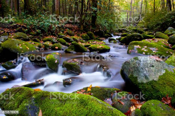 Photo of Stream in the Smoky Mountains in fall