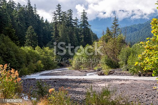 A treelined stream is shown with mountains and clouds in the background in Mt. Rainier National Park