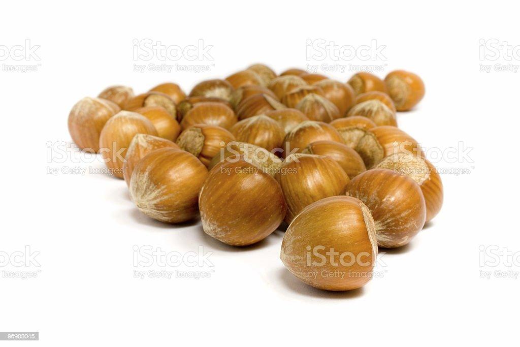 Stream of Hazelnuts royalty-free stock photo