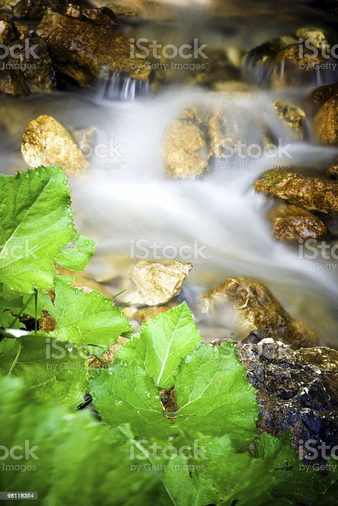 Stream of water macro royalty-free stock photo