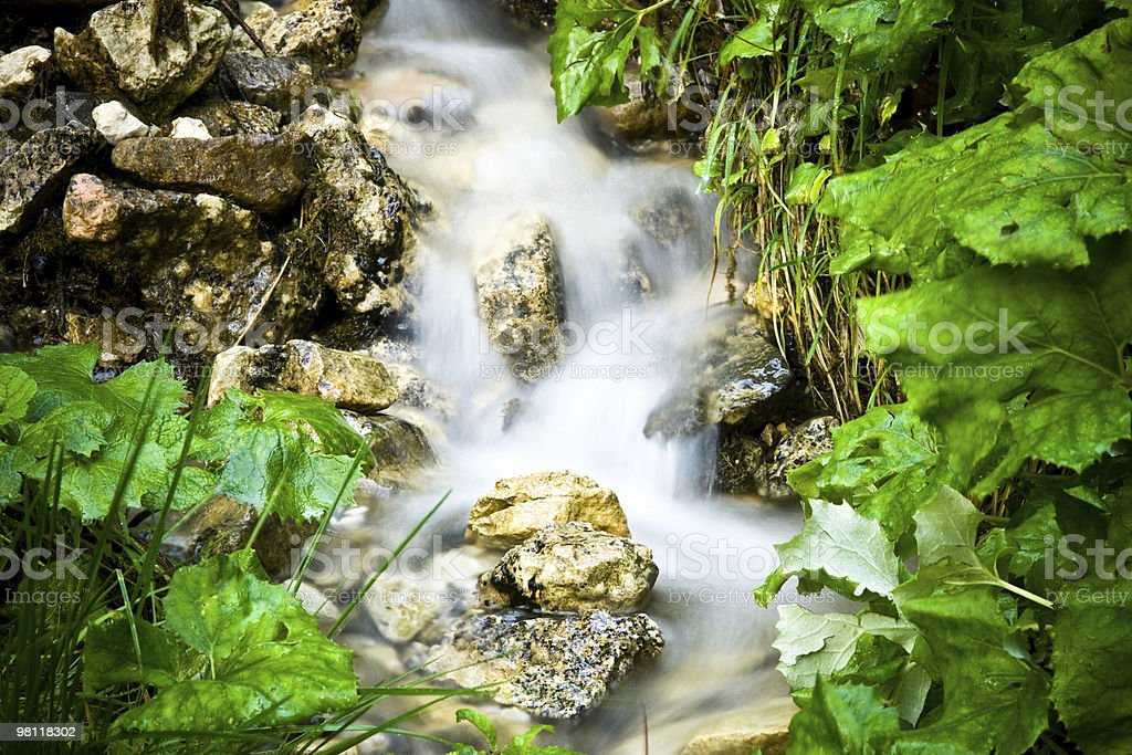 Stream of water royalty-free stock photo