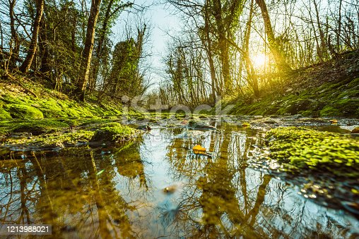 Small stream over mossy rocks in forest nature