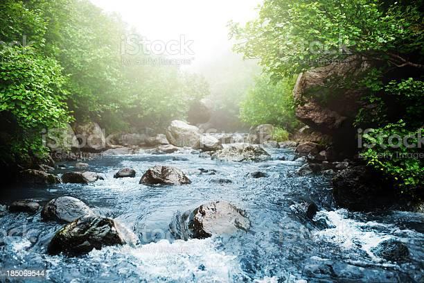 Stream picture id185069544?b=1&k=6&m=185069544&s=612x612&h=gafsf3k5pqqhm1orbmph1ag8nymtg4rvyqzrhlw4gvi=