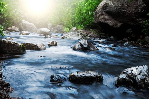 stream - flowing water stock photos and pictures