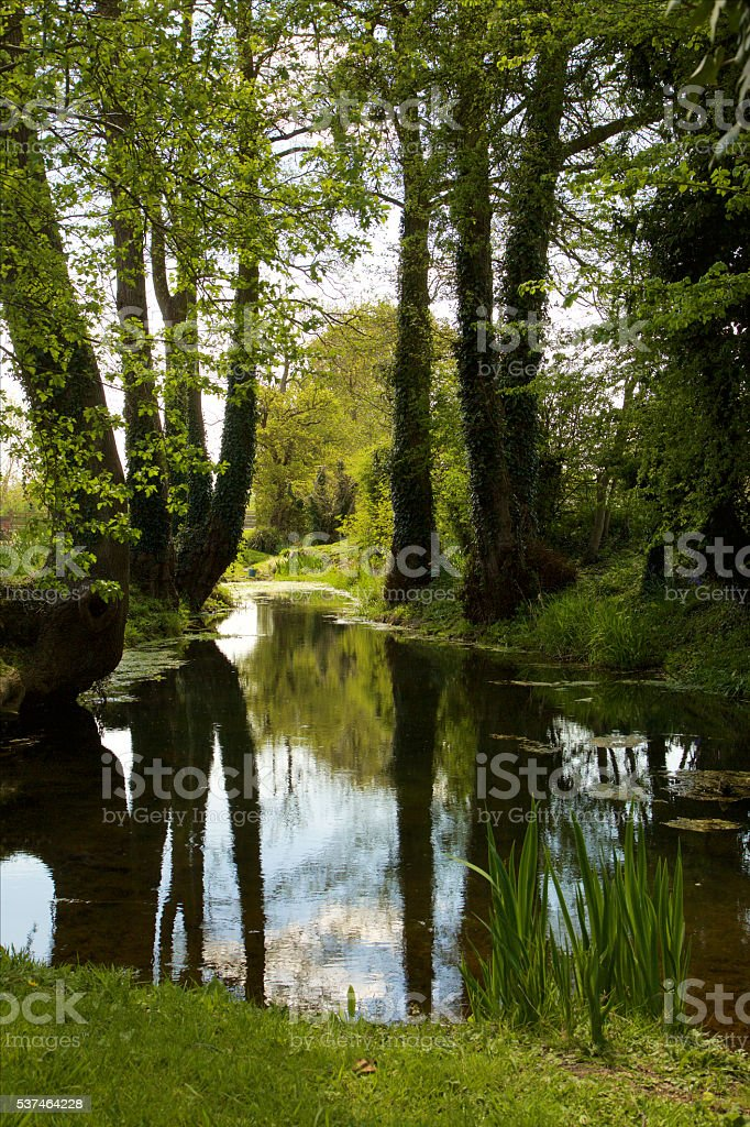 Stream running through countryside – Foto
