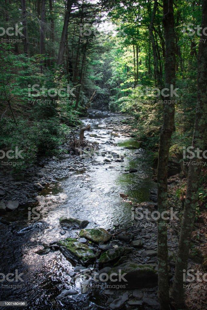 A Stream Runs Through stock photo