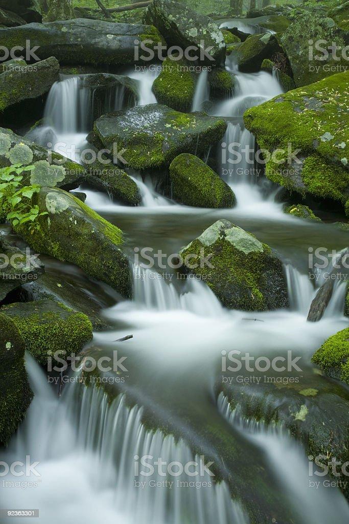Stream, Spring Landscape, Great Smoky Mtns Nat Park, TN royalty-free stock photo