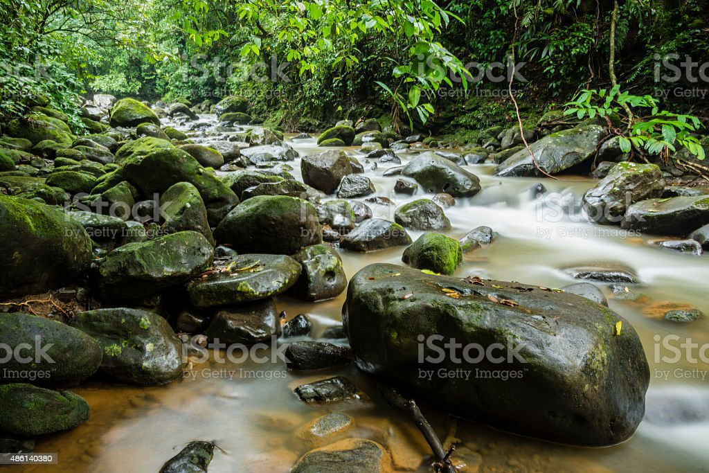 XXXL: Stream through tropical rainforest stock photo