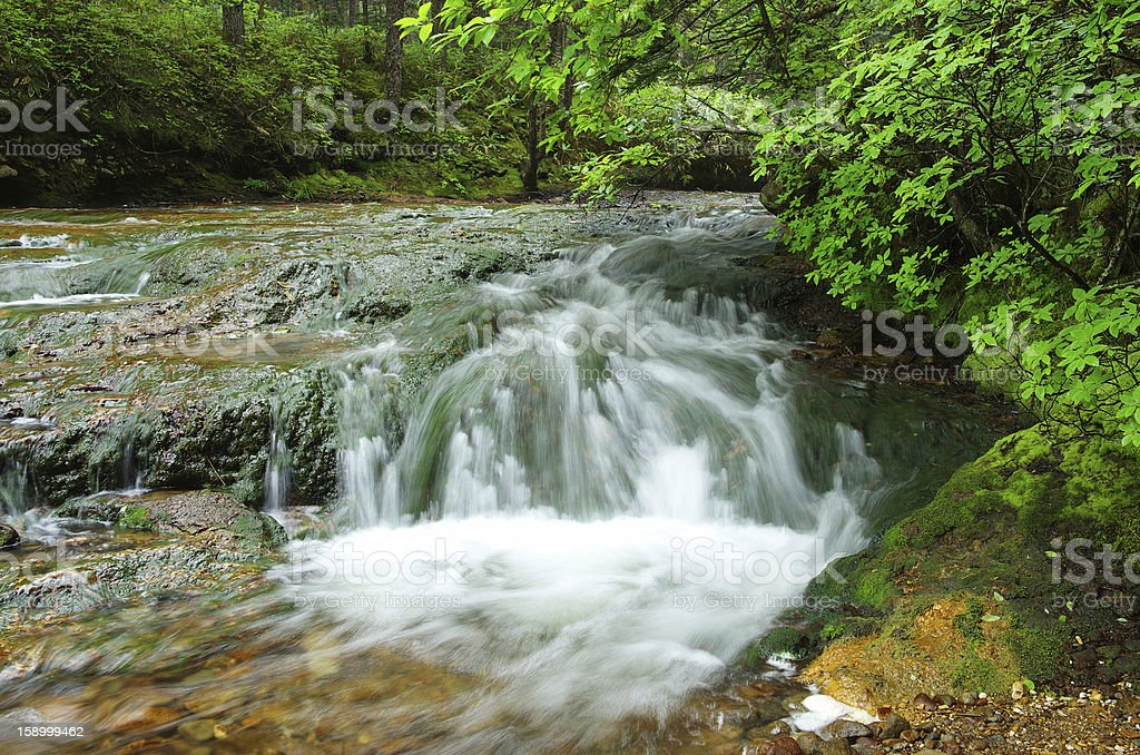 Stream waterfall royalty-free stock photo