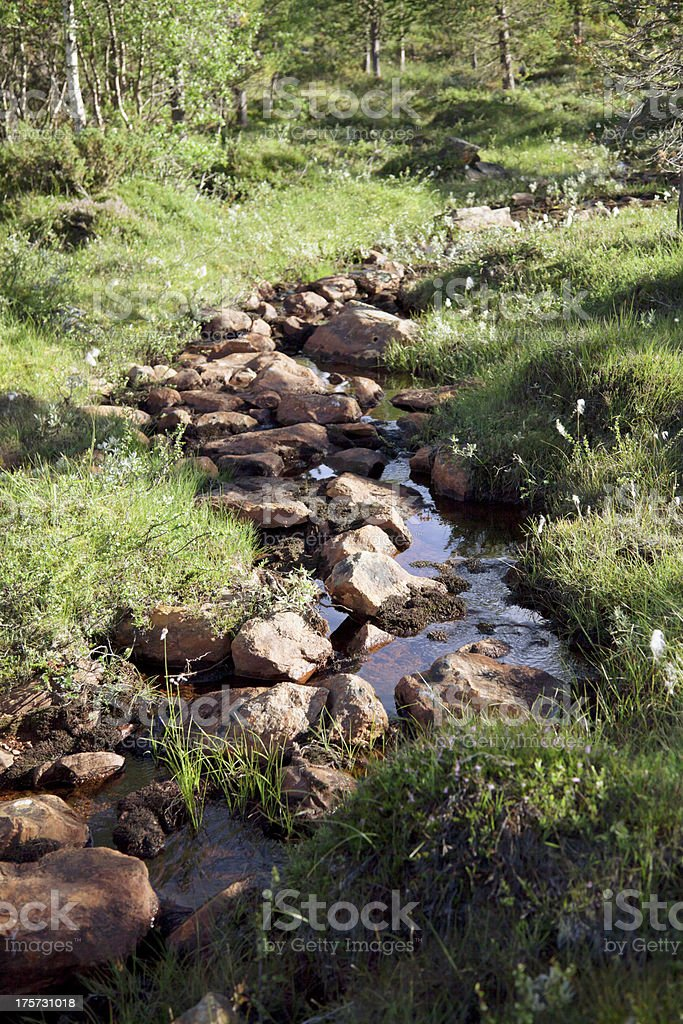 Stream with red rocks in summer. royalty-free stock photo