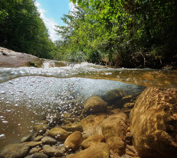 Stream with rocks and air bubbles underwater stock photo