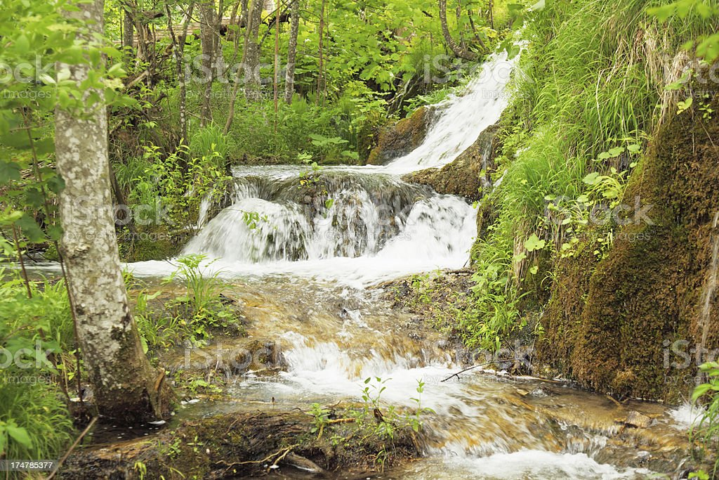 streaming waterfall brown rocks and green leaves Plitvice Lakes Croatia royalty-free stock photo