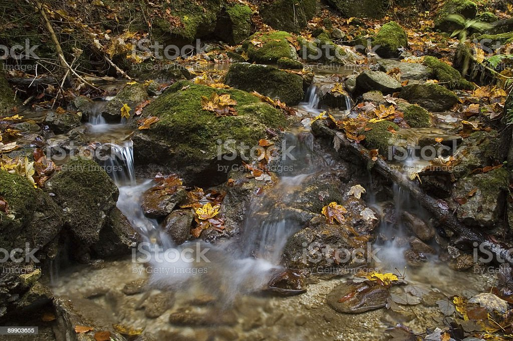 Streams in the autumn royalty-free stock photo