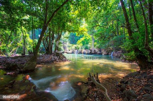 Streams in the rainy season, lush green foliage and water movement.