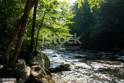 Your standard bucolic stream-side photograph that is just begging for somebody to add some copy to it. And to top it all off its in New Jersey!! Who would have thunk it. Its the South branch of the Raritan River (