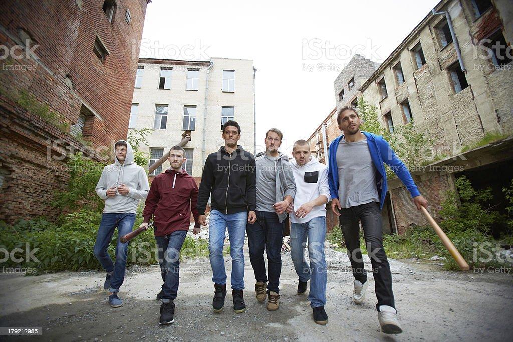 Street bandits stock photo