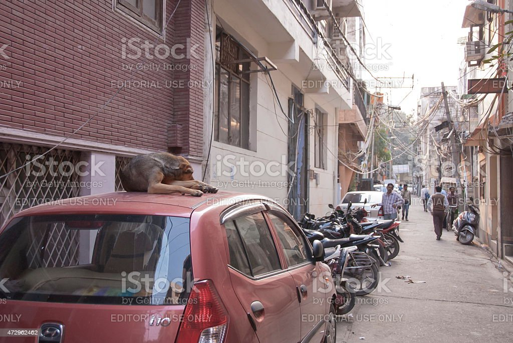 Street car parking in Old Town area, Delhi, India. stock photo