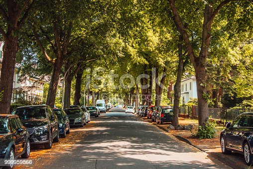 A street covered with trees in Bonn, Germany