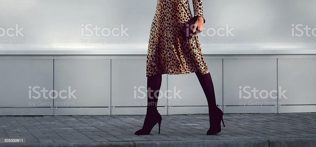 Street fashion concept - stylish elegant woman in leopard dress stock photo