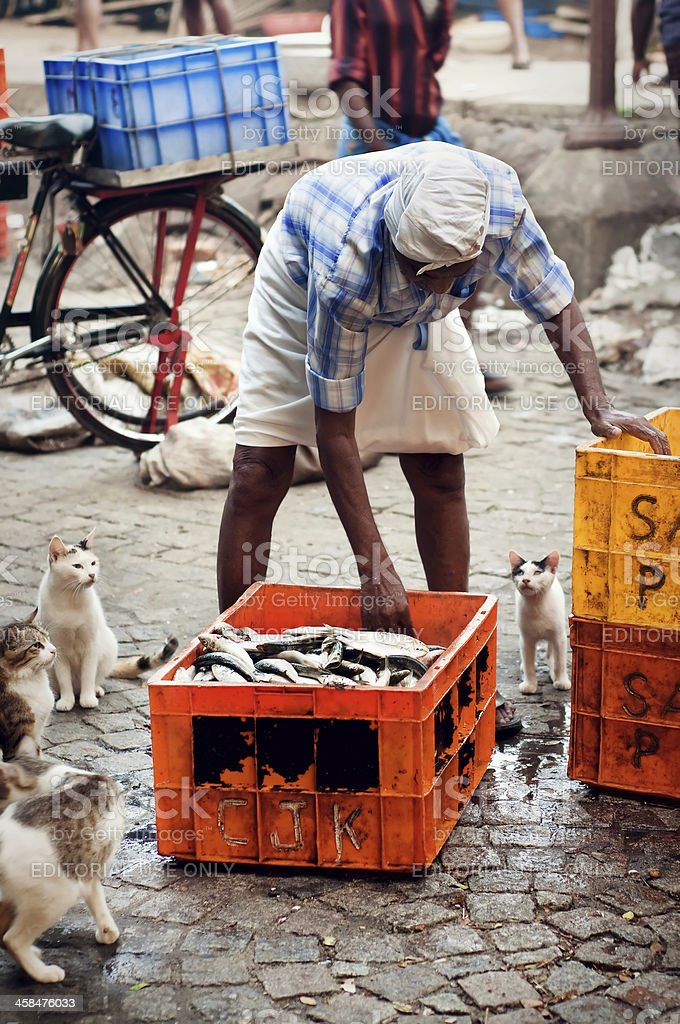 Street fish market stock photo