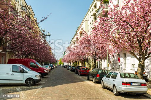 825525754istockphoto Street in Berlin with cherry trees 471634614