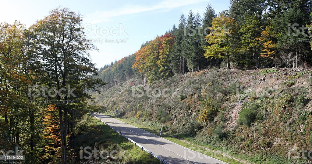 street in Black Forest with colorful autumn leaves royalty-free stock photo