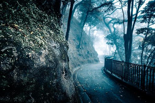 Street in fog in Hong Kong victoria peak