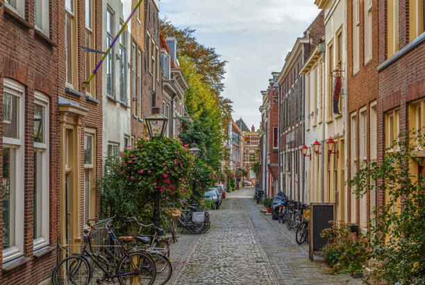 Street in Leiden downtown, Netherlands Street with historical houses in Leiden downtown, Netherlands leiden stock pictures, royalty-free photos & images