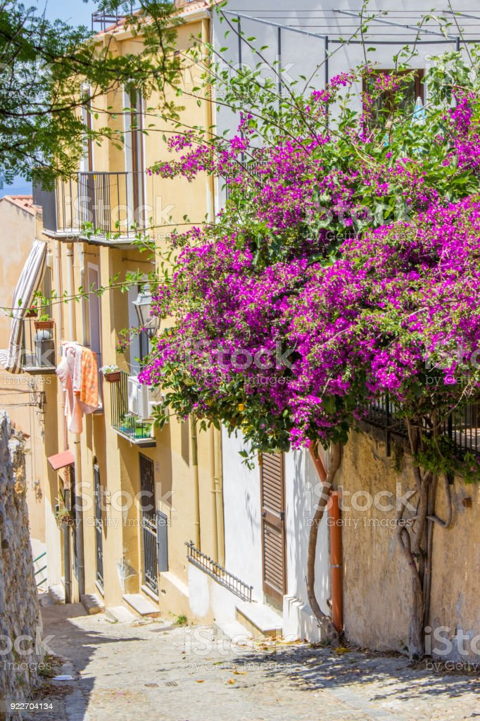 Street in Medieval Town of Cefalu in Sicily with Bougainvillea Tree stock photo