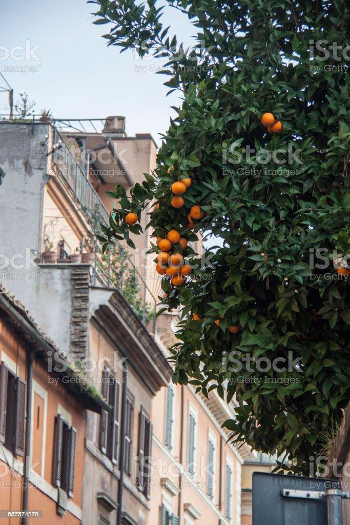 Street in Rome, Italy stock photo