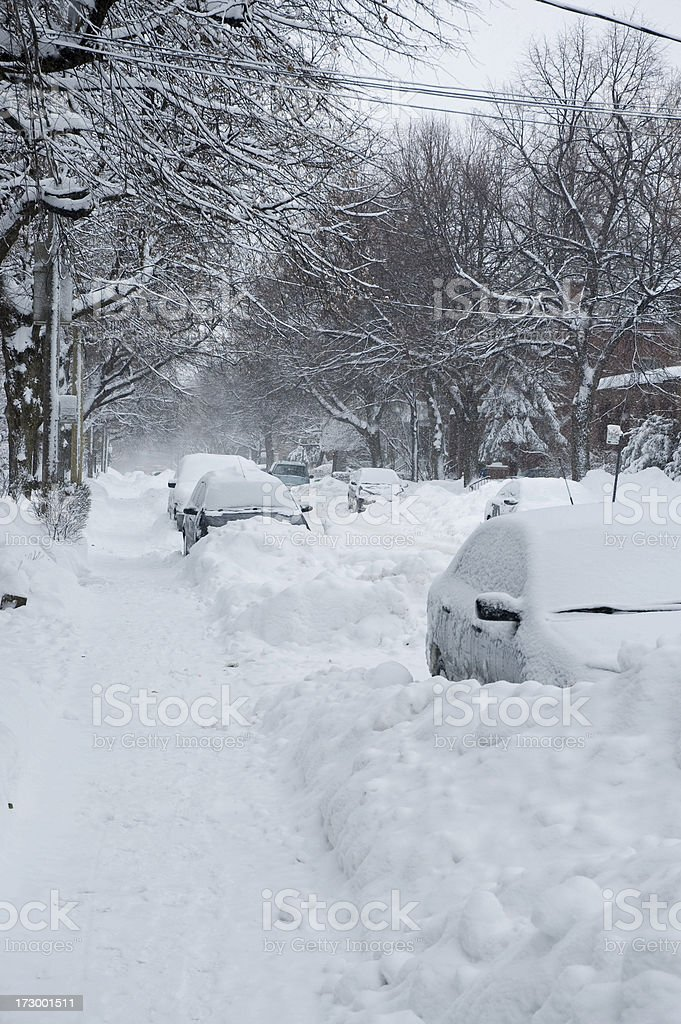 Street in winter royalty-free stock photo