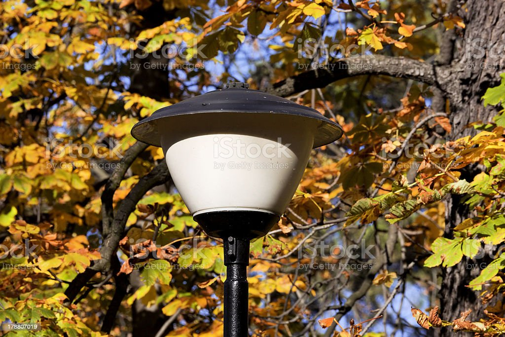 Street lamp in the park royalty-free stock photo