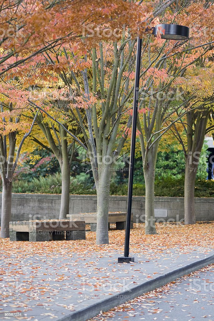 Street light on college campus in autumn royalty-free stock photo