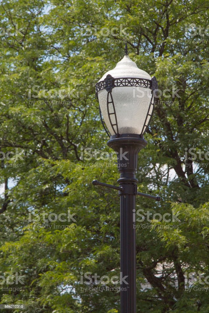 Street Light royalty-free stock photo