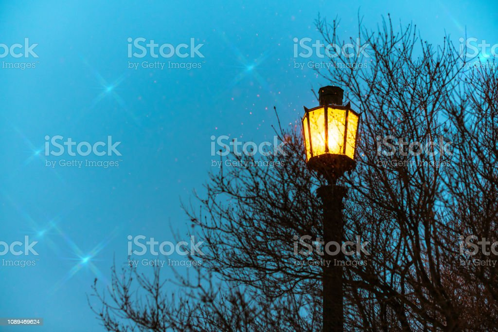 Street light, vintage gothic style with copy space. Fairy yellow...