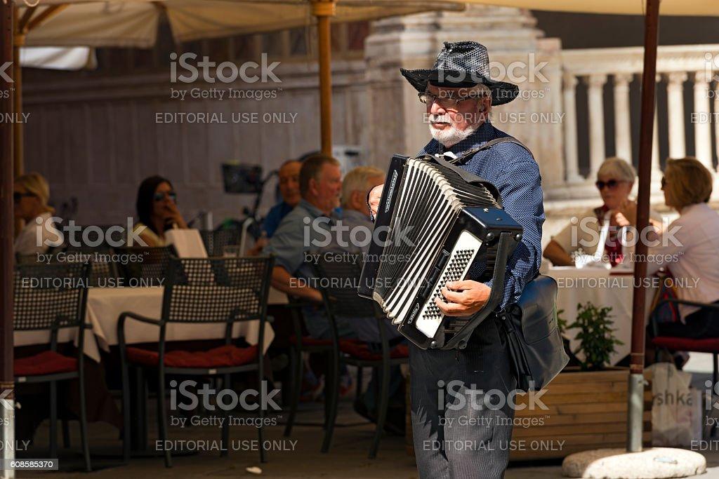 Street Musician Plays the Accordion in Verona stock photo