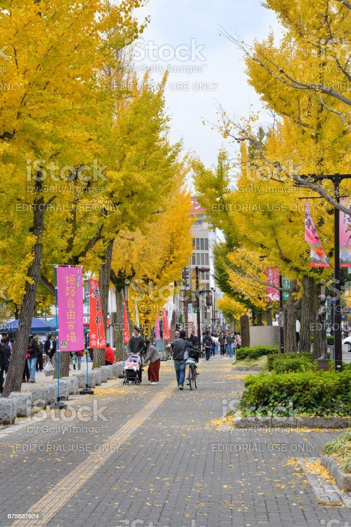 Street near Himeji castle, Japan royalty-free stock photo