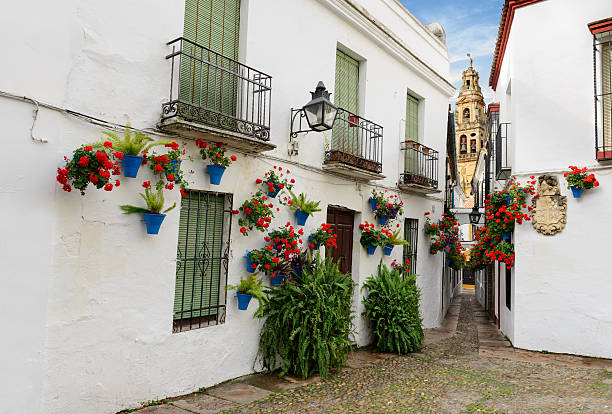 Calle de las Flores with Mezquita Calle de las Flores Cordoba, Spain.  cordoba spain stock pictures, royalty-free photos & images