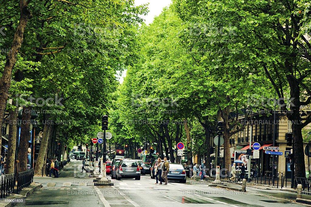 Street of Paris royalty-free stock photo