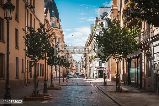 Desert typical pavement street of Paris to the Galeries Lafayette in summer