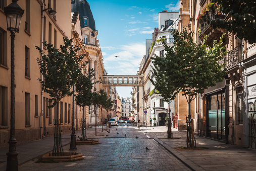 Street of Paris to the Galeries Lafayette in summer