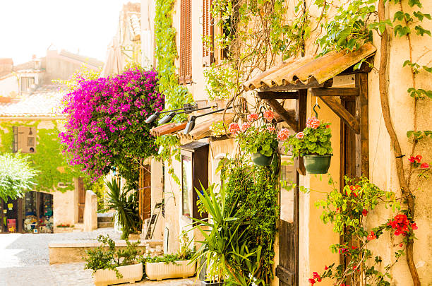 Street of provencal town full of flowers (Provence-Alpes-Cote d'Azur, France) stock photo