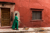 Latin woman walking her chihuahua dogs in San Miguel de Allende, Mexico
