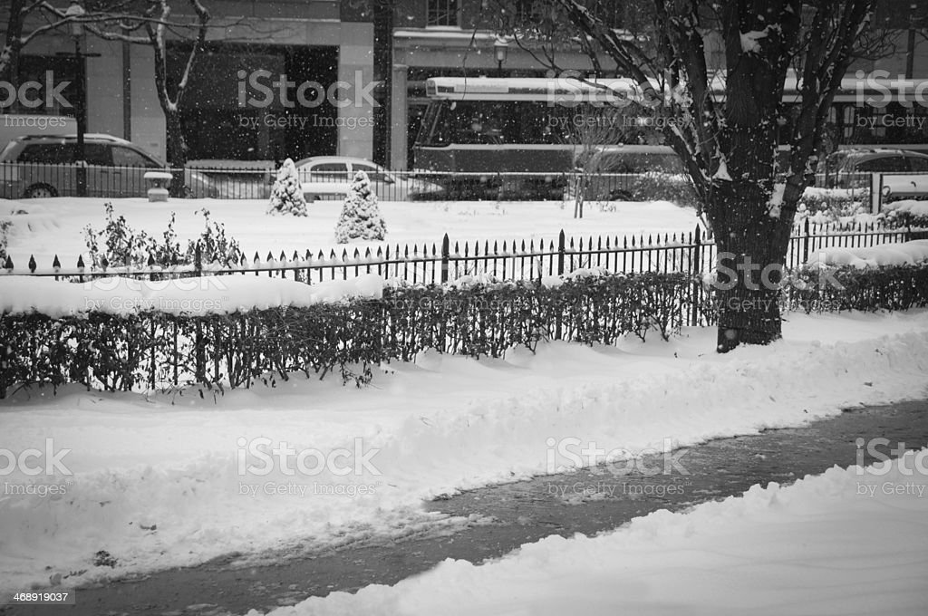 street snowing royalty-free stock photo